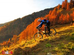 Indian Summer Reckingen Goms Wallis