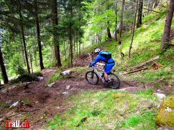 Mountainbike Downhill Chilcherbergen Silenen