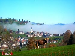 Oberiberg Iron Bike Race